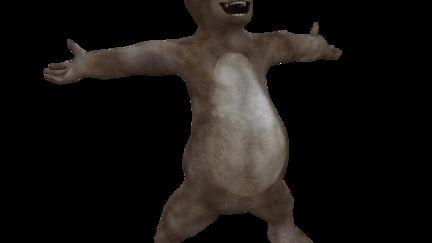 Joe the bear