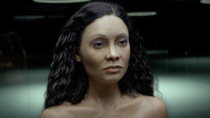 Maeve Millay (Thandie Newton) CG Portrait