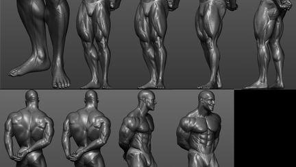 Shawn ray Bodybuilder