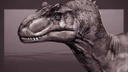 Allosaurus Study