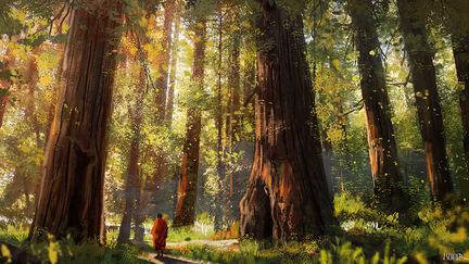 a walk among giants