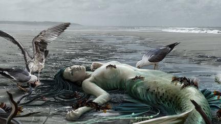 Beach, The South Mermaids