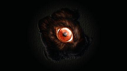 eye instinct