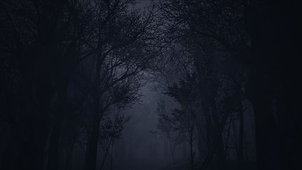 Creepy Forest - Unreal Engine 4