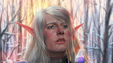 Elf-paladin. Comission work