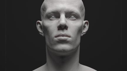 Male Anatomy 2