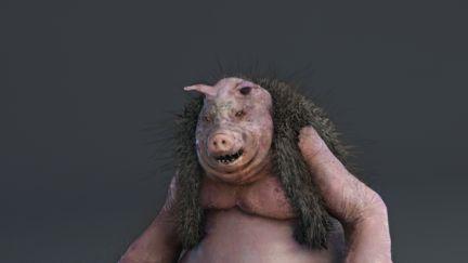 Hyper Pig Piichan