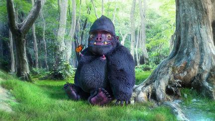 Baby Spoil Boy Gorilla