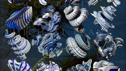 Plastic Radiolarians