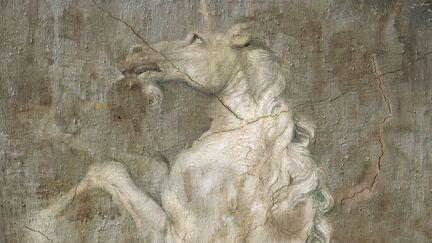 Shadows of the unicorn - Raquel Martínez Gómez - EU Prize for Literature Winner story - book cover