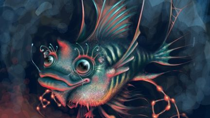 Doodly Fish
