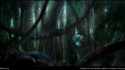 Deep In Forest