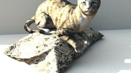 EVEN THE CAT LIKES PurrRADA