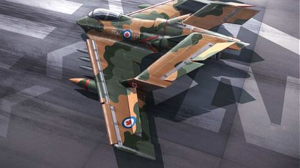 Canadian Fighter