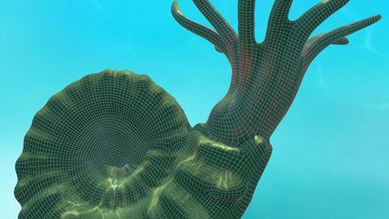Nautiloid  - Prehistoric Shark Texturing Challenge