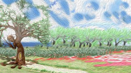 jandar tree