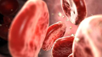 Blood cells WIP
