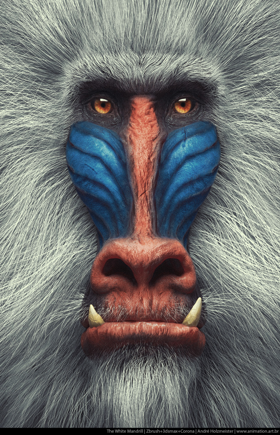 Andholzmeister the white mandrill 1 8993aa83 vl9n