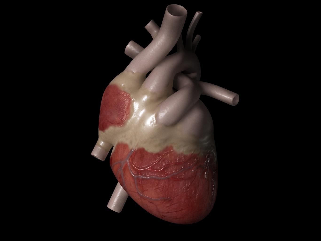 Bipolar heart 1 b1d8d5a6 q299