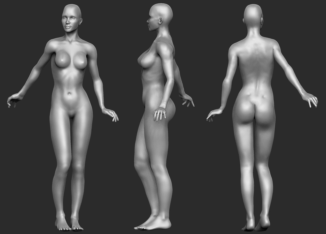 Fluxist8070 female anatomy study 1 e1053ac8 aw8l