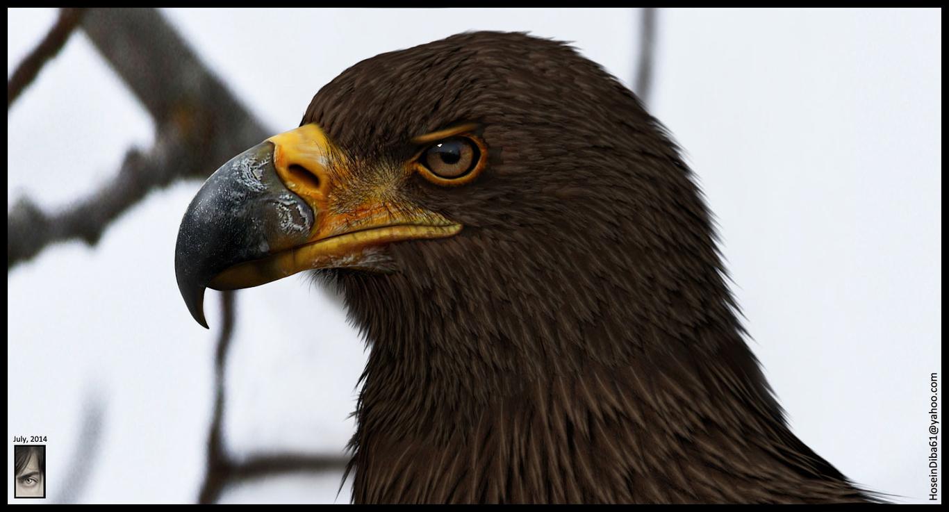 Hosseindiba an eagle model done  1 97334704 i8h9