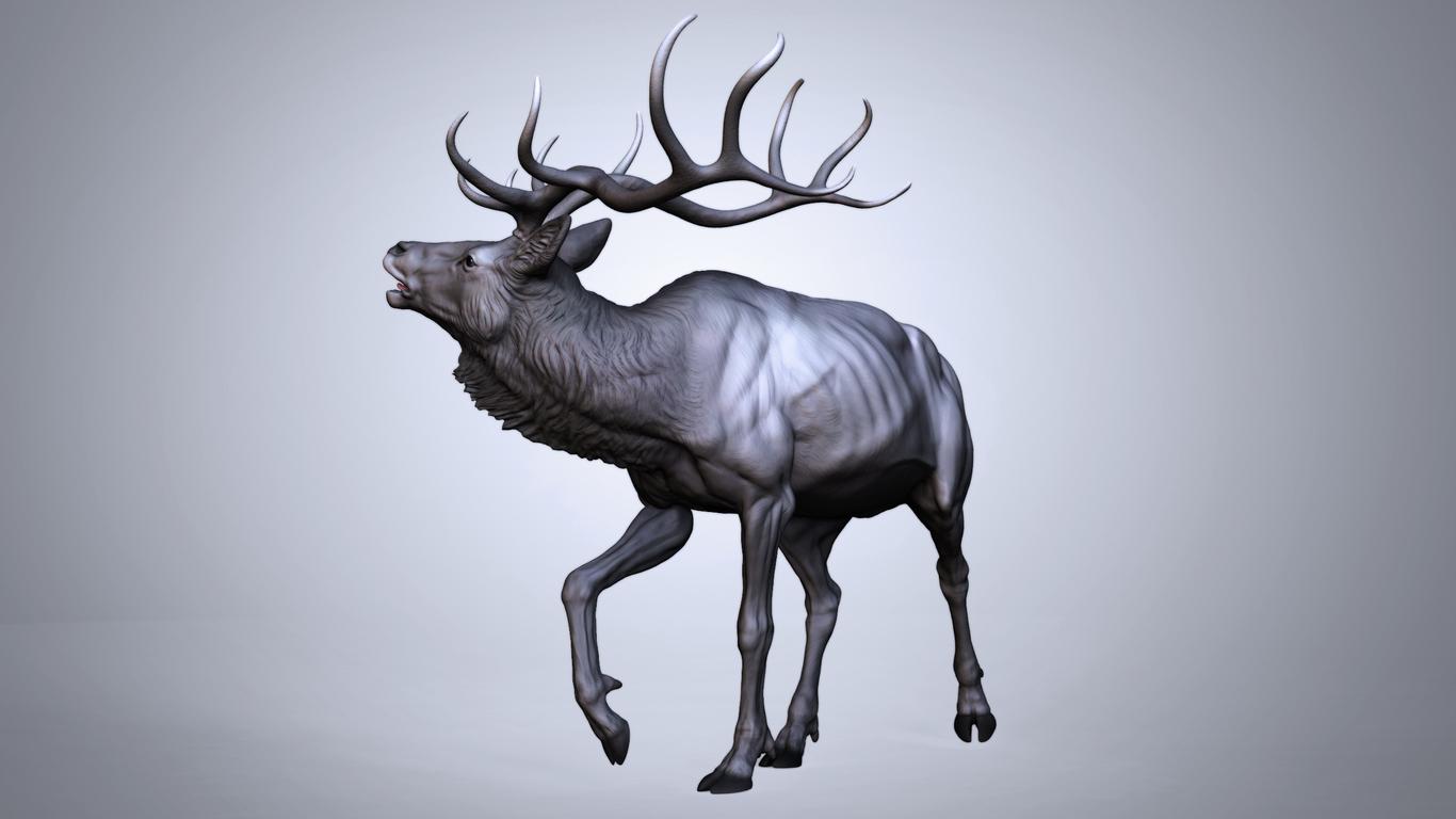 Iamsadpanda season of the elk 1 57508588 tikf