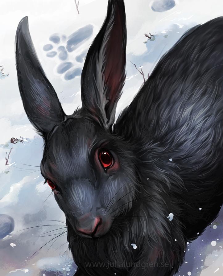 Lambidy svart hare 1 7487d76a lv78