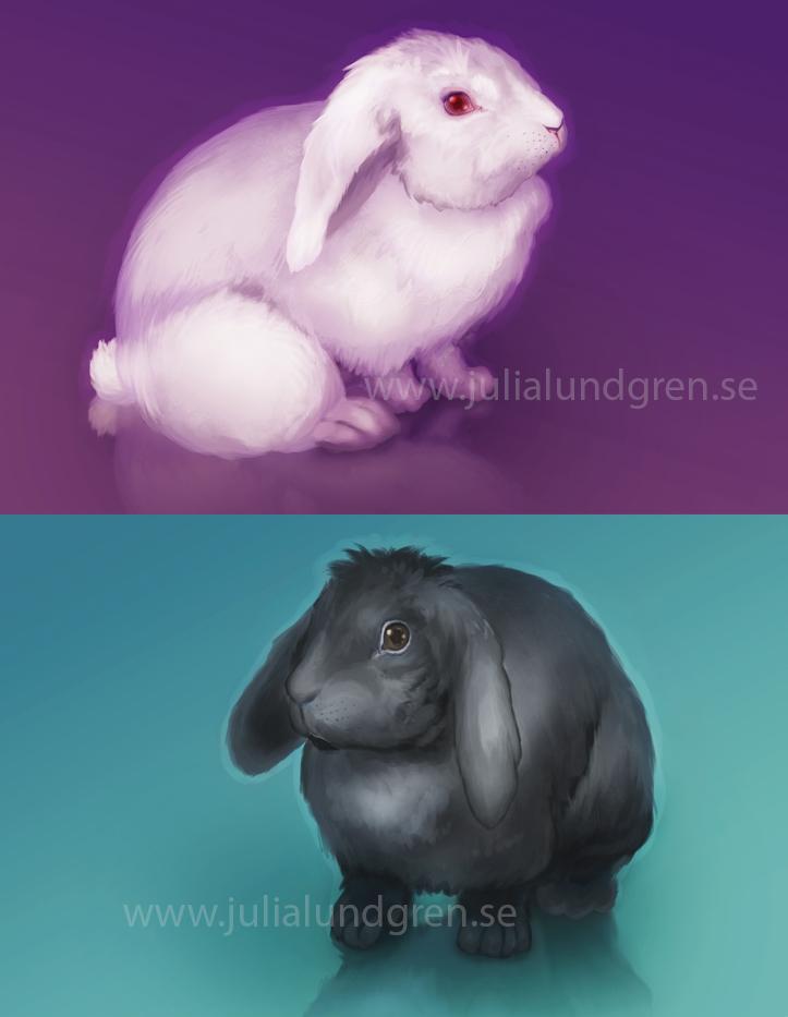 Lambidy white bunny slash bl 1 518eddb8 30of