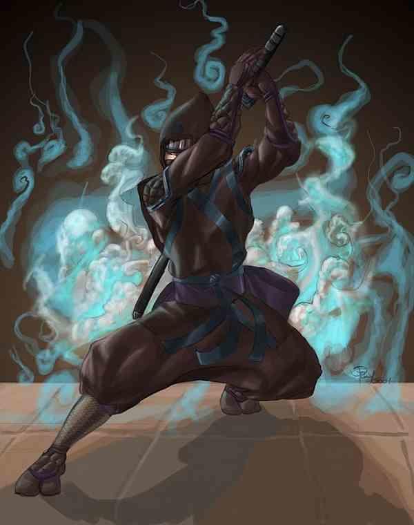 Xpulyx ninja 1 75266d33 dlvz