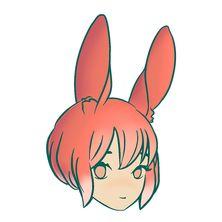 No rabbit b5bb6e18